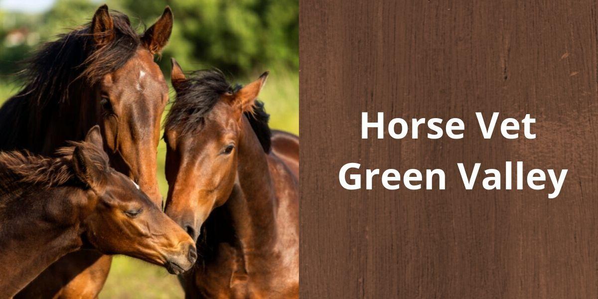 Horse Vet Green Valley